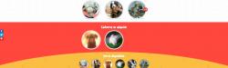 Pettito: plataforma virtual de adopción y venta de perros